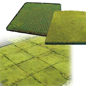 バイオ技術によって高速大量培養した 人工培養スナコケを用いた「屋上・壁面緑化ユニット」